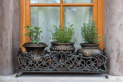 Fleur de Lys Herb Pots with Base