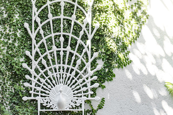 Peacock Garden Trellis (White Finish)