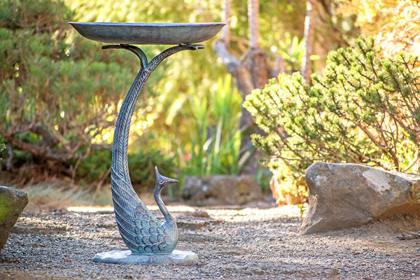 Polished Peacock Bird Bath