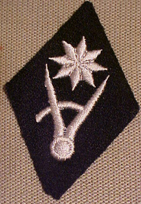 Waffen-SS Duty Area Specialty Diamond