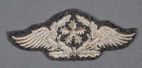 "Career / Rating Patch for ""Fliegertechnisches Personal"".."