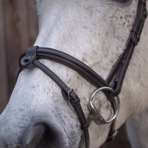 Jumper Flash Noseband