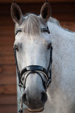 Patent Dressage Bridle With White Padding
