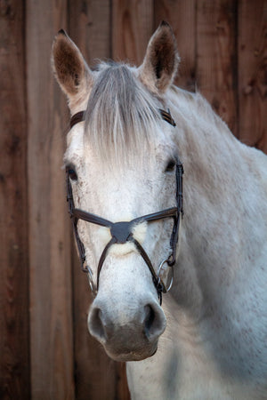Sheepskin Grackle Bridle