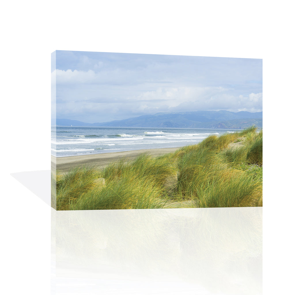 Dune Grass on Ocean Beach by Anon - FairField Art Publishing