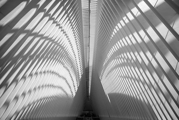 Oculus Ceiling, World Trade Center