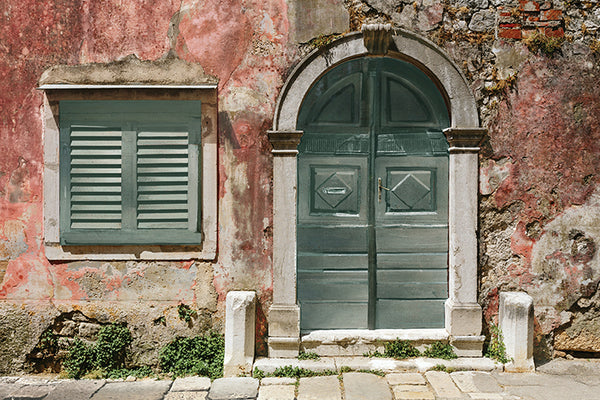 Antique Shutters & Door