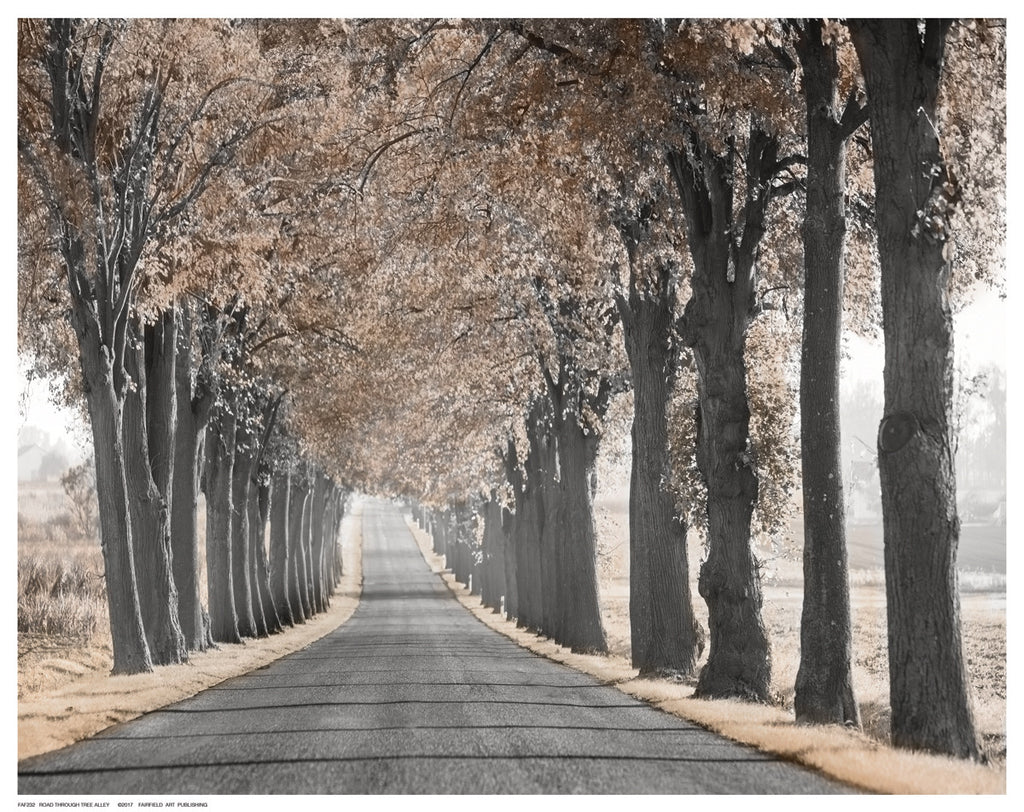 Road Through Tree Alley Posters by Anon - FairField Art Publishing