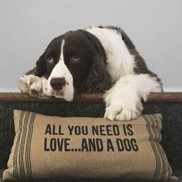 All You Need Is Love ... And A Dog by Kristin Lowenkron - FairField Art Publishing