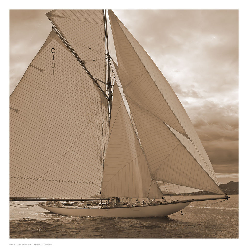 All Sails Unfurled Posters by Anon - FairField Art Publishing