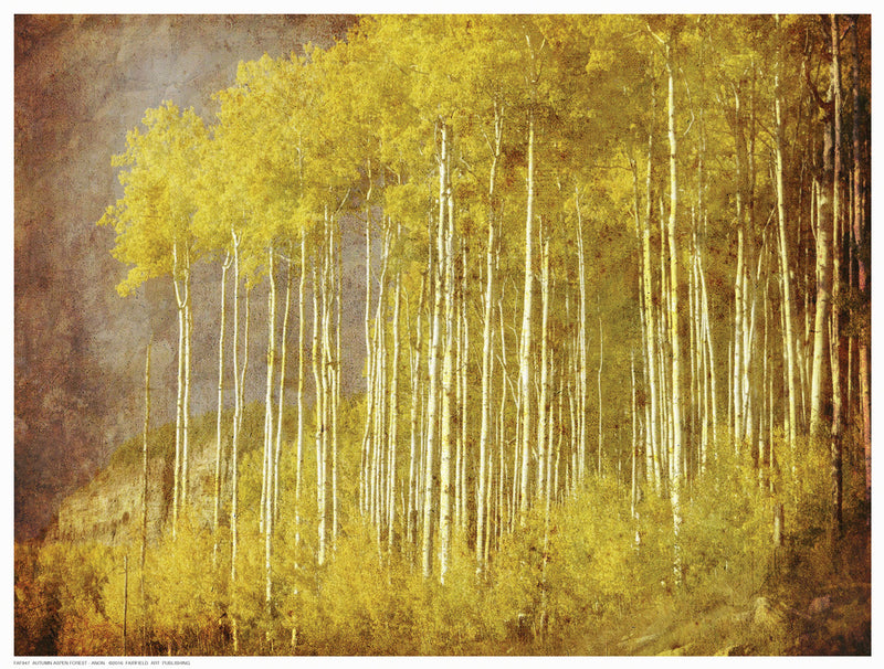 Autumn Aspen Forest by Anon - FairField Art Publishing