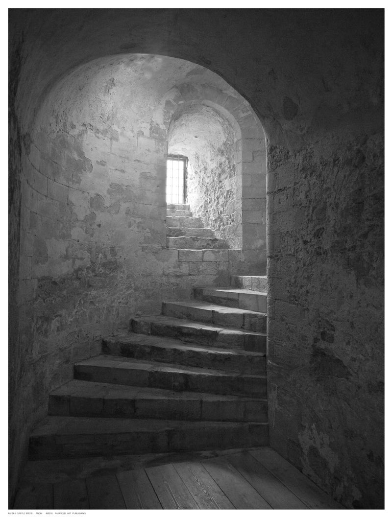 Castle Steps Posters by Anon - FairField Art Publishing