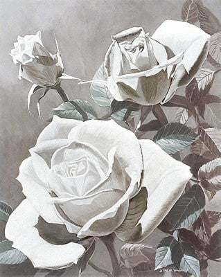 White Roses Floral by Marianne Hornbuckle - FairField Art Publishing