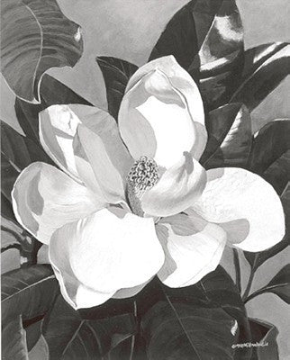 White Magnolia Floral by Marianne Hornbuckle - FairField Art Publishing