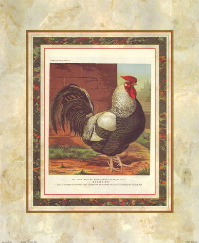 Rose-Combed Dorking Cock Posters by J.W. Ludlow - Cassells Poultry Book - FairField Art Publishing