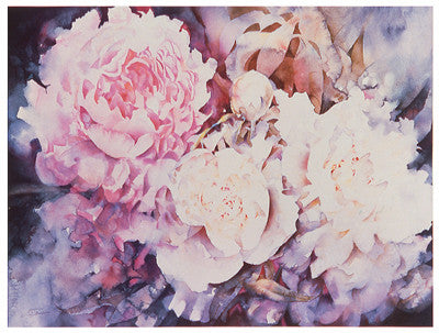 Peonies Floral by David Maddern - FairField Art Publishing