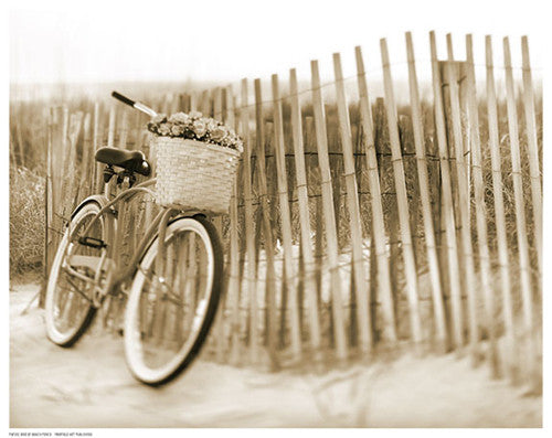 Bike by Beach Fence Posters by Anon - FairField Art Publishing