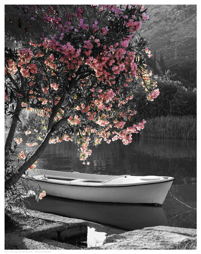 Boat Under the Spring Blossoms