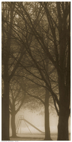 Trees in the Mist Posters by Anon - FairField Art Publishing