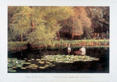 The Lily Pond, Shudbrook, Near Lincoln Traditional Art by Edward R. Taylor - FairField Art Publishing