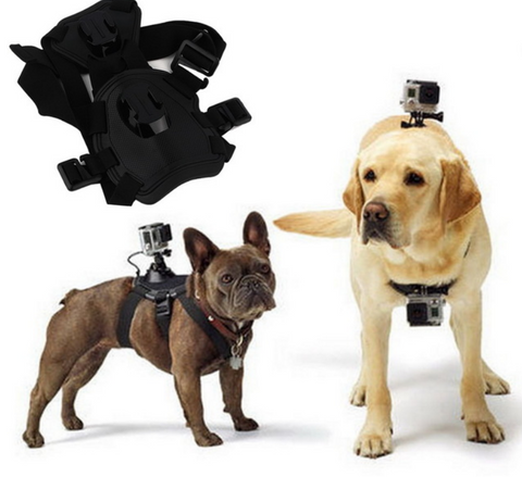 Dog Harness Kit for GoPro