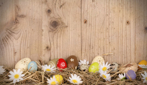 Easter 'wood w/eggs' Seasonal Photography Studio Backdrop