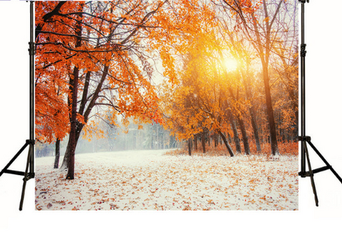 Fall Winter with Snow Photography Studio Backdrop