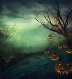 Halloween Night Pumpkin Photography Studio Backdrop