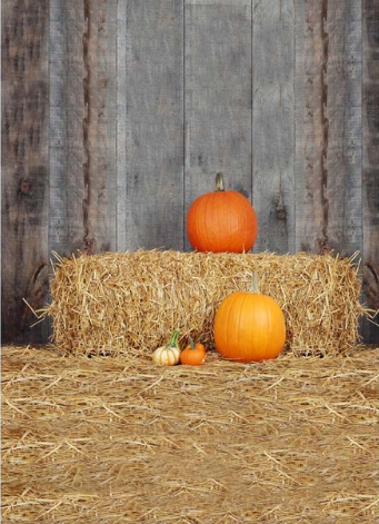 Pumpkin Fall Halloween Photography Studio Backdrop