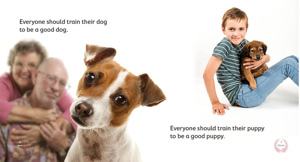 Train Your Dog 6-pack (Level 4)