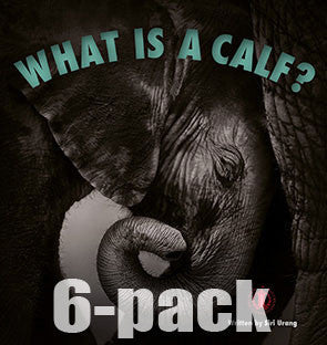 What is a Calf? 6-pack (Level 5)