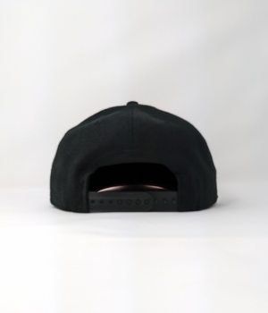Prominent Logo Hat