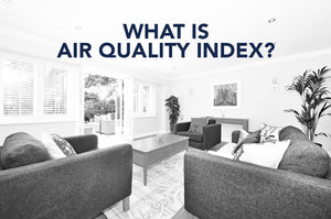 What Is the Air Quality Index?