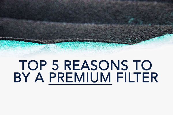 5 Reasons to buy a premium filter
