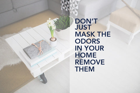 Don't mask house odor eliminate it.