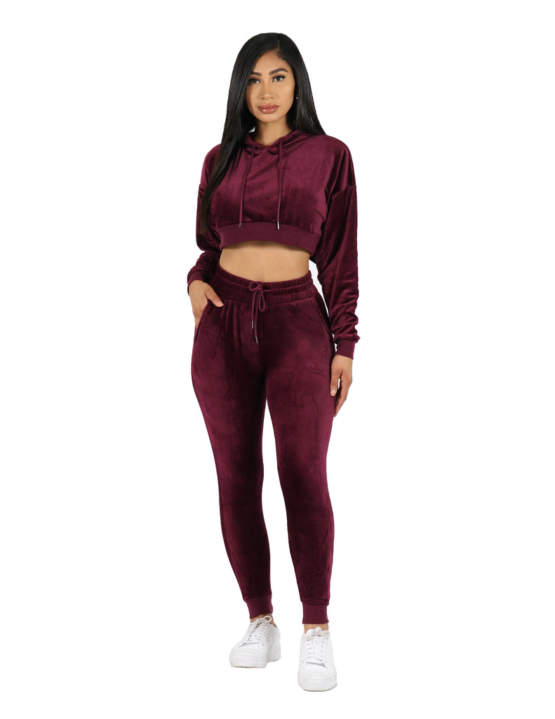 Cropped Hoodie Velour Active Set