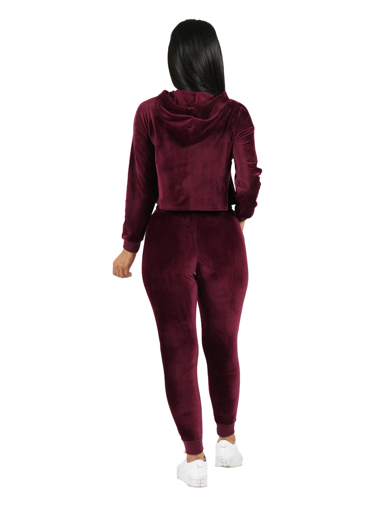 Velour Active Set Hoodie Crop Top and Jogger