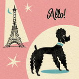 Poodle in Paris Greetings Card