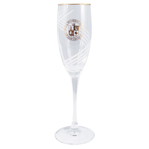 Virginia Tech Seal Etched Champagne Flute