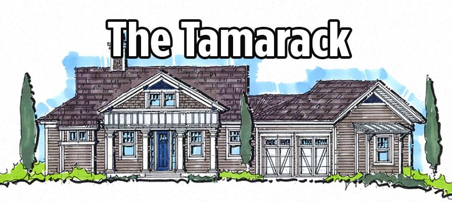 Tamarack - Mountain House Plan