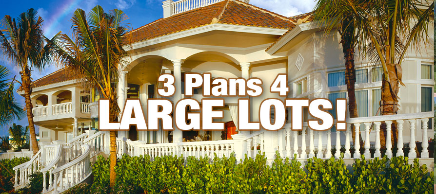 Three House Plans for Large Lots