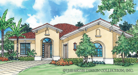 Large home designs plans