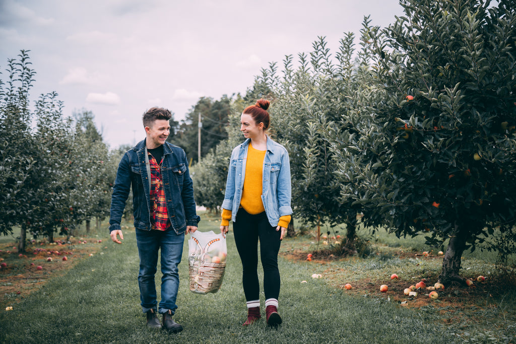 apple-picking-thanksgiving