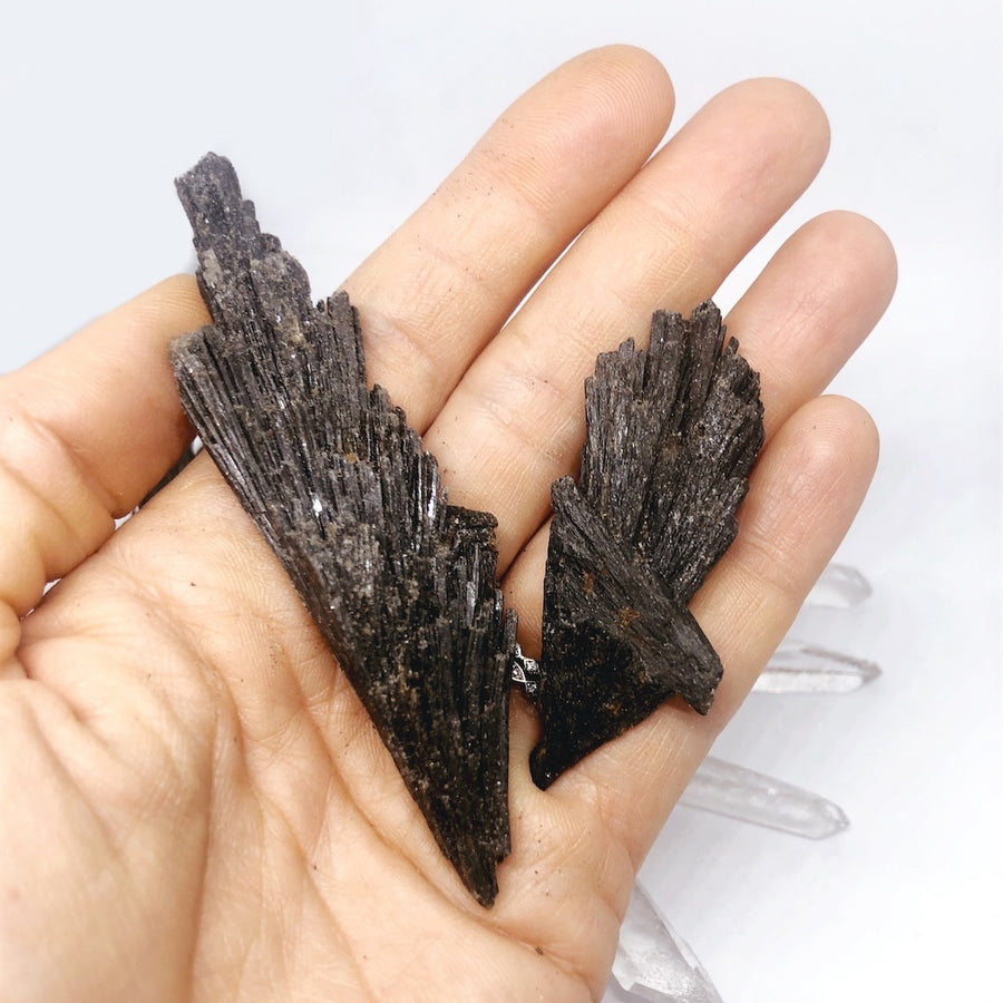 Black Kyanite Fans