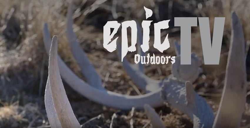 Utah DWR explains shed hunting closure and tough winters