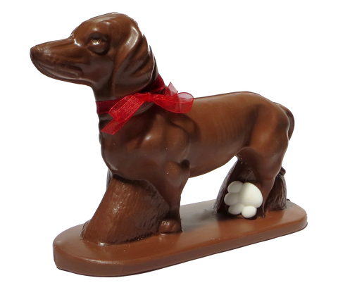 Homemade Chocolate Dachshund Dog