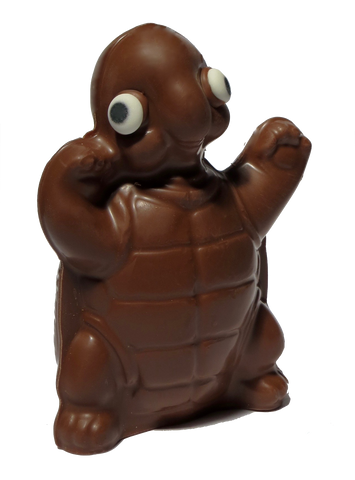 Homemade Chocolate Turtle