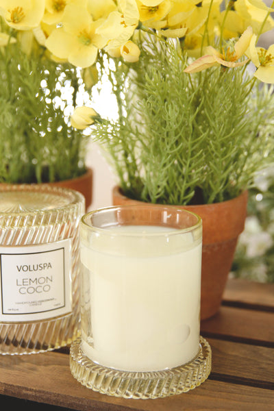 Lemon Coco Icon Candle with Cloche Cover