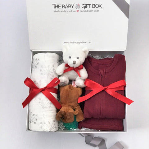 Tiny Joy - Marroon | Baby Gift Set
