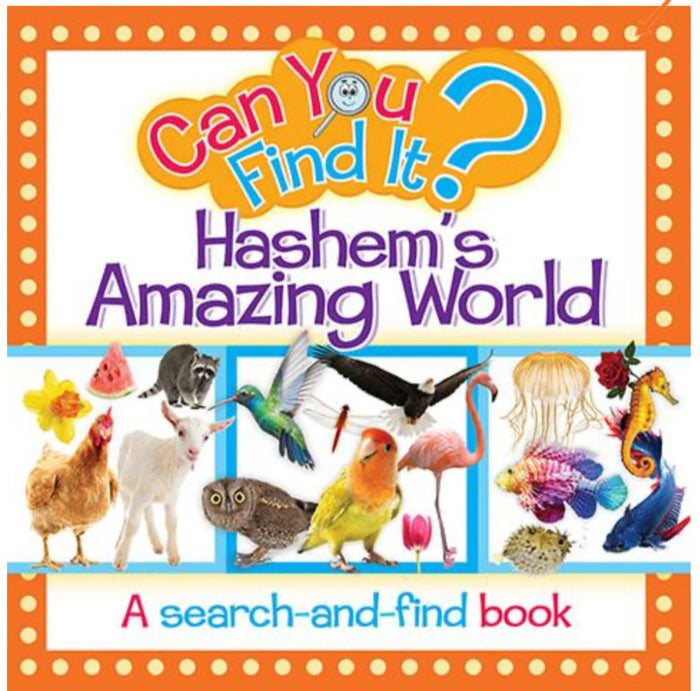Board Book | Can you find it? Hashem's Amazing World